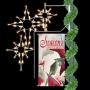 Silhouette Banner Enhancer w/Bethlehem Stars Pole Mount